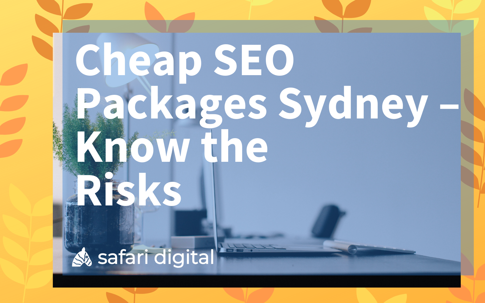 cheap-seo-packages-sydney-article-cover-large