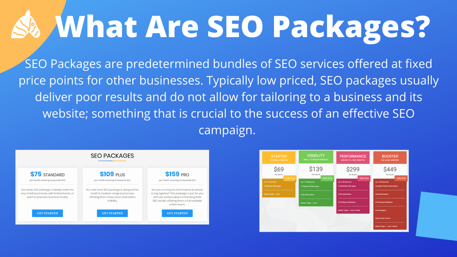 SEO package examples and information