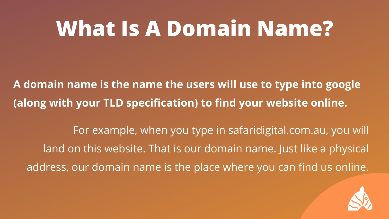 What is a domain name infographic