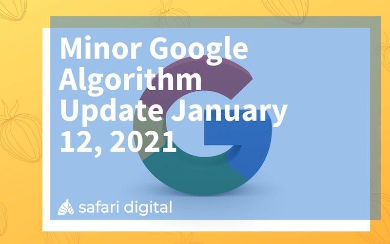 minor google algorithm update small cover image